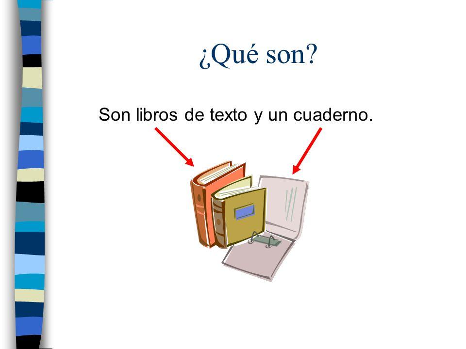 ¿Qué son? Son libros de texto y un cuaderno.