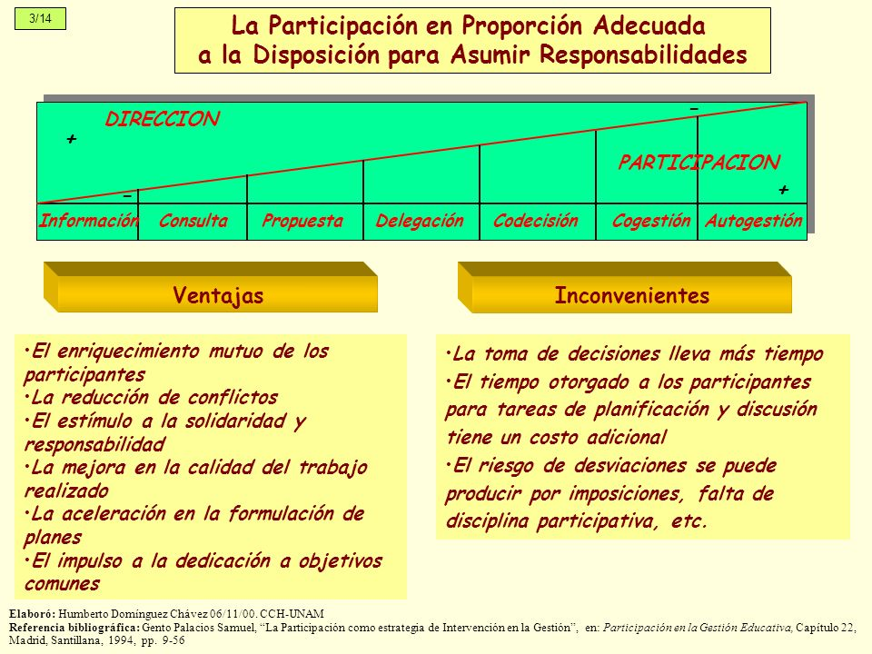 La Participación en Proporción Adecuada a la Disposición para Asumir Responsabilidades InformaciónConsultaPropuestaDelegaciónCodecisiónCogestiónAutoge