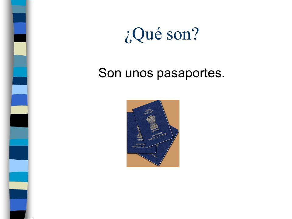 ¿Qué son? Son unos pasaportes.