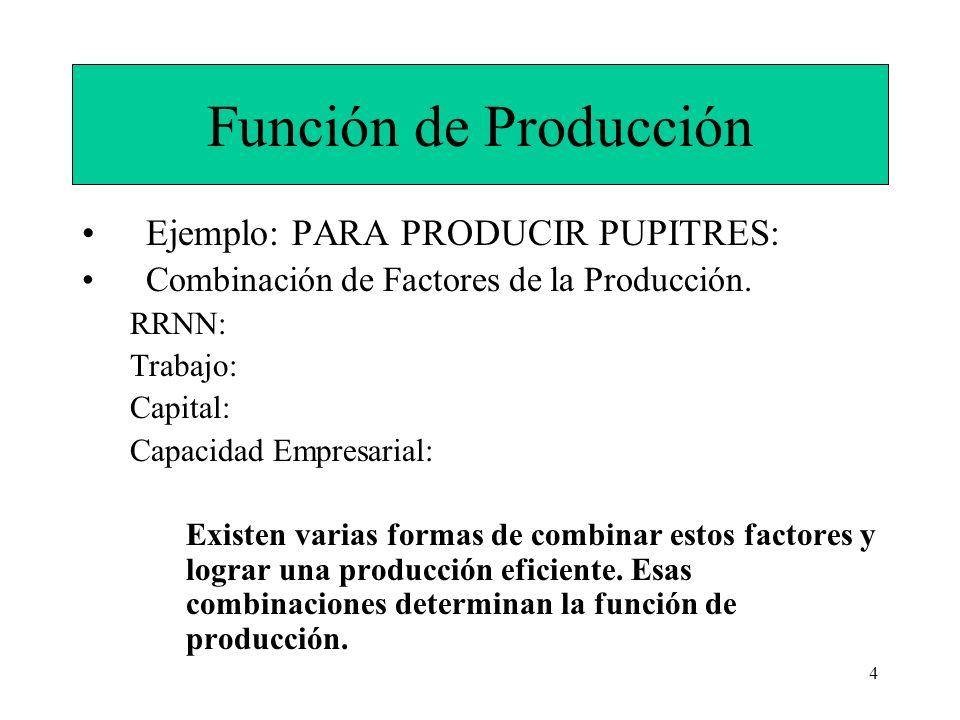 4 Función de Producción Ejemplo: PARA PRODUCIR PUPITRES: Combinación de Factores de la Producción. RRNN: Trabajo: Capital: Capacidad Empresarial: Exis