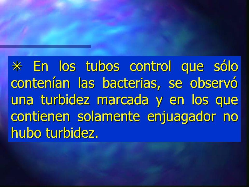 Resultados: BacteriaListerineScopePlax Streptococcusmutans Turbidez moderada No hay turbidez turbidez Lactobacillicasei Turbidez moderada No hay turbidez turbidez 24 horas después de inocular e incubar los tubos de Thioglicolato que contenían los enjuagadores bucales, se observó lo siguiente: 24 horas después de inocular e incubar los tubos de Thioglicolato que contenían los enjuagadores bucales, se observó lo siguiente: