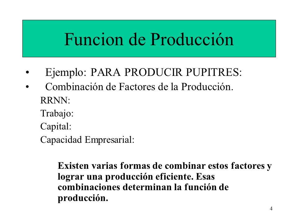 4 Funcion de Producción Ejemplo: PARA PRODUCIR PUPITRES: Combinación de Factores de la Producción. RRNN: Trabajo: Capital: Capacidad Empresarial: Exis