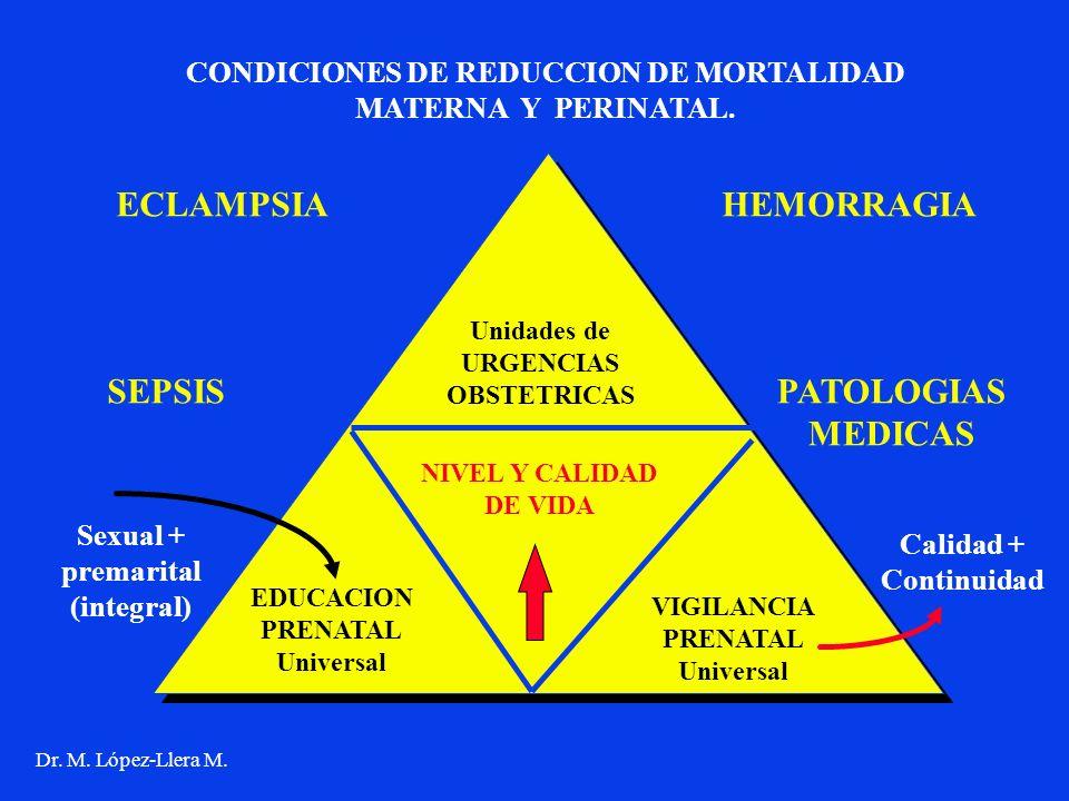 Unidades de URGENCIAS OBSTETRICAS EDUCACION PRENATAL Universal VIGILANCIA PRENATAL Universal NIVEL Y CALIDAD DE VIDA CONDICIONES DE REDUCCION DE MORTA