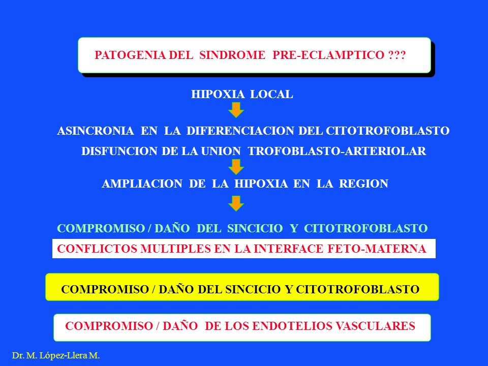 ASINCRONIA EN LA DIFERENCIACION DEL CITOTROFOBLASTO HIPOXIA LOCAL AMPLIACION DE LA HIPOXIA EN LA REGION DISFUNCION DE LA UNION TROFOBLASTO-ARTERIOLAR