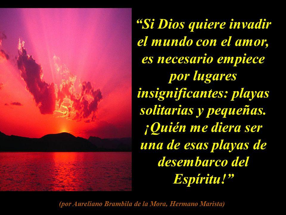 El cielo no es un premio que nos da el Amor, sino la participación plena en ese Amor. (por Aureliano Brambila de la Mora, Hermano Marista)