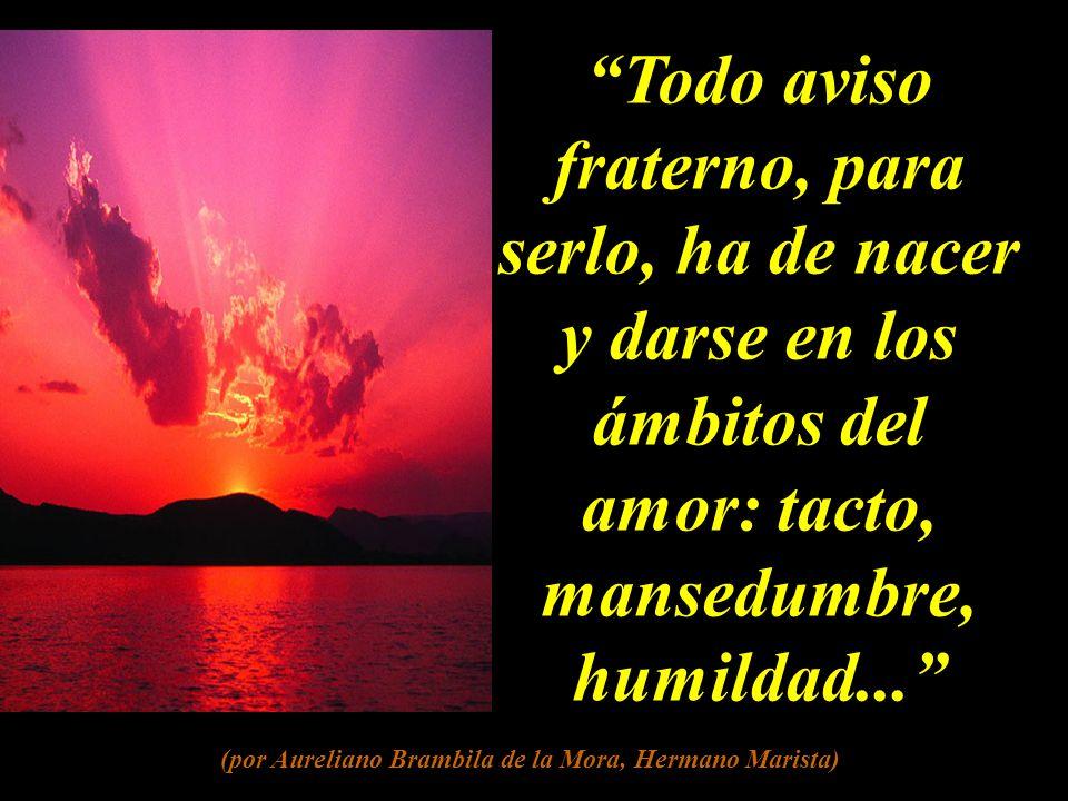 Todo aviso fraterno, para serlo, ha de nacer y darse en los ámbitos del amor: tacto, mansedumbre, humildad...
