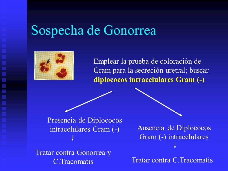 Sospecha de Gonorrea Emplear la prueba de coloración de Gram para la secreción uretral; buscar diplococos intracelulares Gram (-) Presencia de Diploco