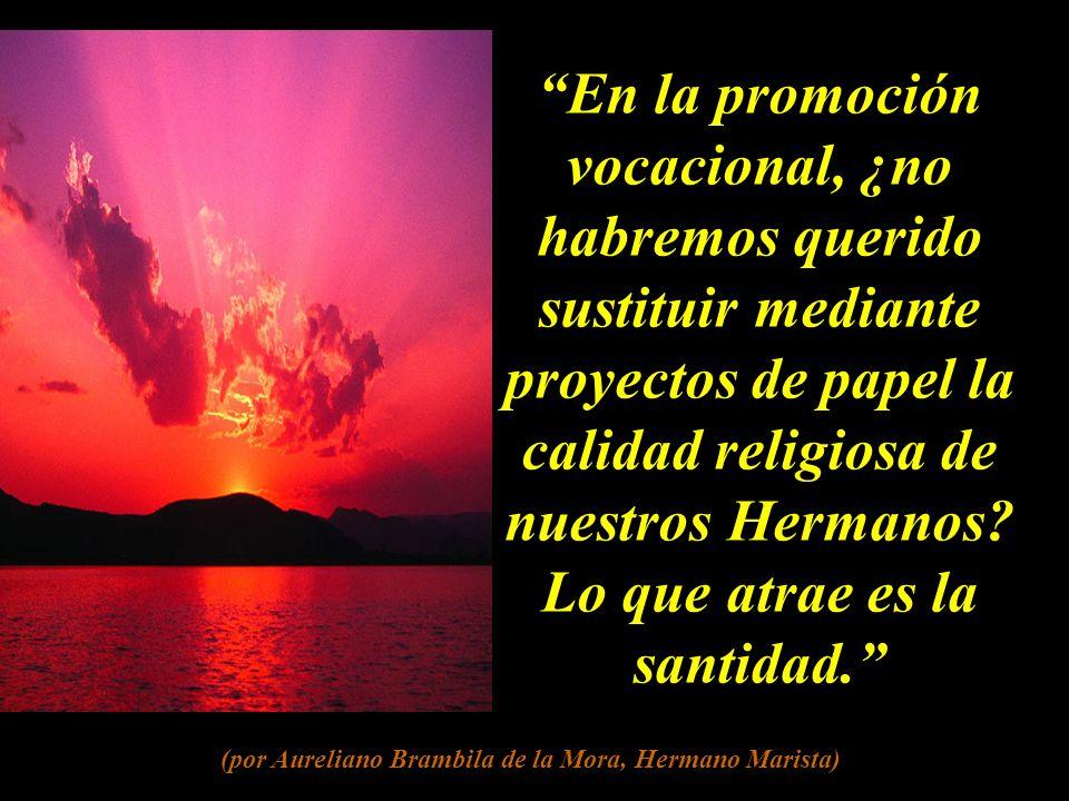 En la promoción vocacional, ¿no habremos querido sustituir mediante proyectos de papel la calidad religiosa de nuestros Hermanos.