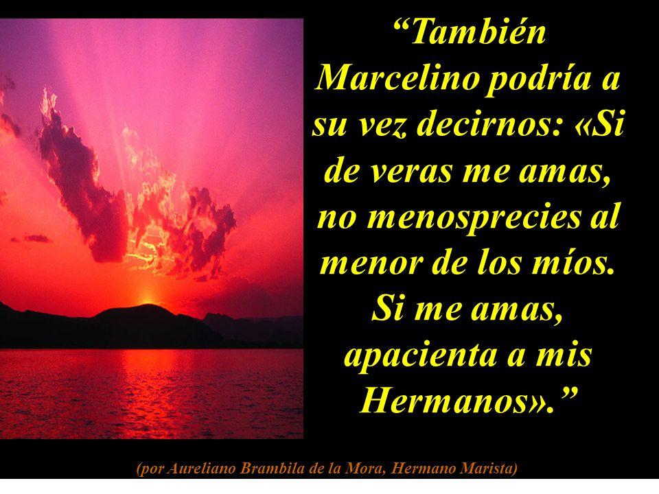 También Marcelino podría a su vez decirnos: «Si de veras me amas, no menosprecies al menor de los míos.