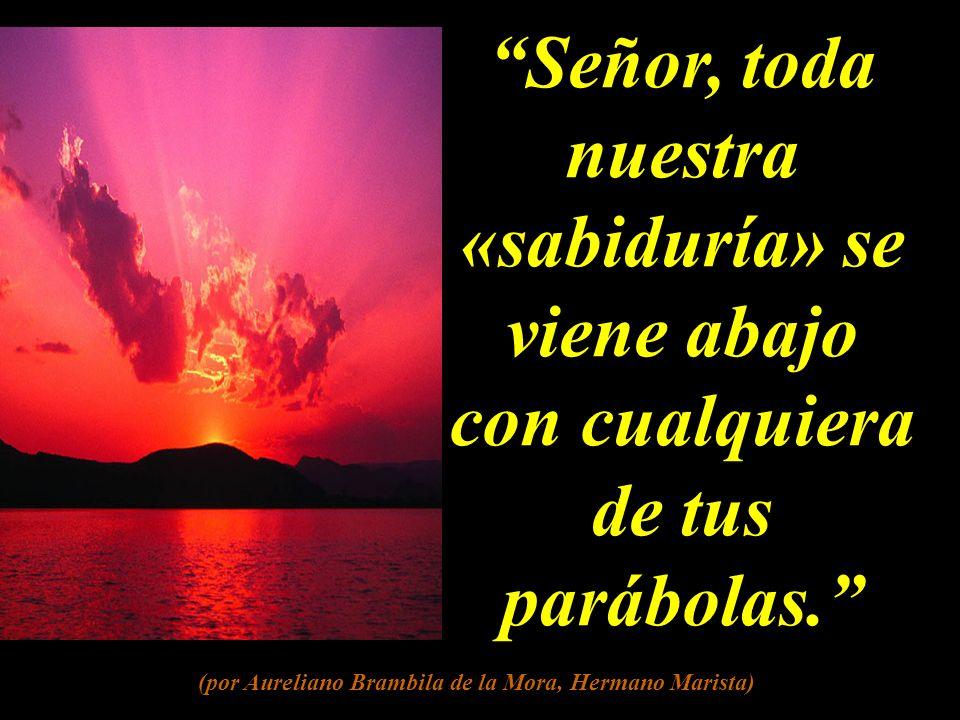 Señor, toda nuestra «sabiduría» se viene abajo con cualquiera de tus parábolas.
