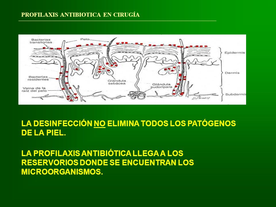 PROFILAXIS ANTIBIOTICA EN CIRUGÍA LA PROFILAXIS QUIRÚRGICA NO EXIME DE UNAS ADECUADAS MEDIDAS HIGIENICAS Y DE ASEPSIA.