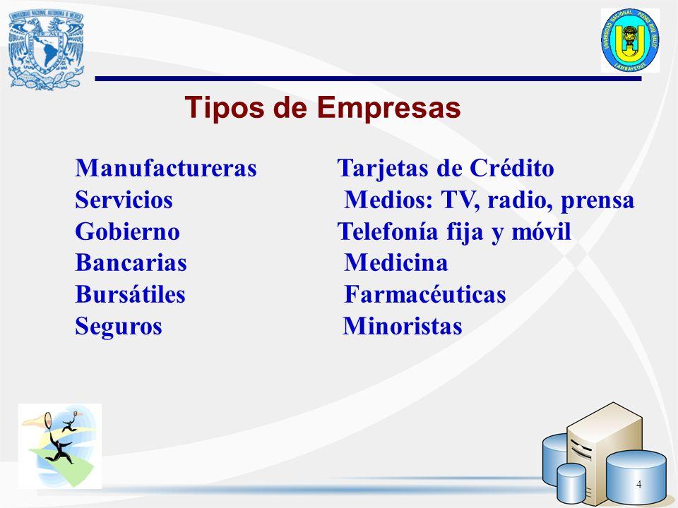 4 Tipos de Empresas Manufactureras Tarjetas de Crédito Servicios Medios: TV, radio, prensa Gobierno Telefonía fija y móvil Bancarias Medicina Bursátil