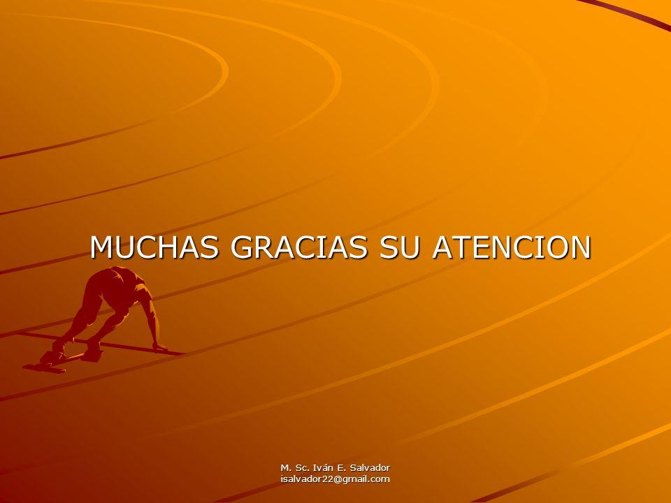 M. Sc. Iván E. Salvador isalvador22@gmail.com MUCHAS GRACIAS SU ATENCION