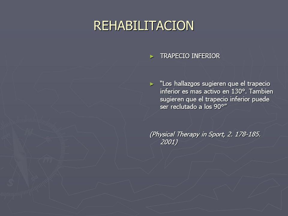 REHABILITACION TRAPECIO INFERIOR Los hallazgos sugieren que el trapecio inferior es mas activo en 130°. Tambien sugieren que el trapecio inferior pued
