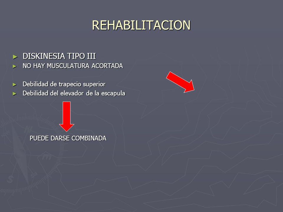 REHABILITACION DISKINESIA TIPO III DISKINESIA TIPO III NO HAY MUSCULATURA ACORTADA NO HAY MUSCULATURA ACORTADA Debilidad de trapecio superior Debilida