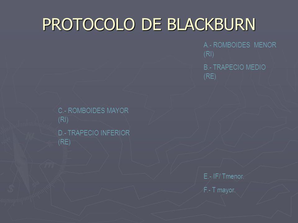 PROTOCOLO DE BLACKBURN A.- ROMBOIDES MENOR (RI) B.- TRAPECIO MEDIO (RE) C.- ROMBOIDES MAYOR (RI) D.- TRAPECIO INFERIOR (RE) E.- IF/ Tmenor. F.- T mayo