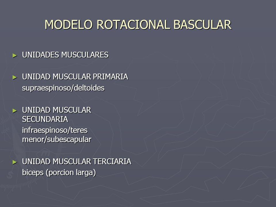 MODELO ROTACIONAL BASCULAR UNIDADES MUSCULARES UNIDADES MUSCULARES UNIDAD MUSCULAR PRIMARIA UNIDAD MUSCULAR PRIMARIAsupraespinoso/deltoides UNIDAD MUS