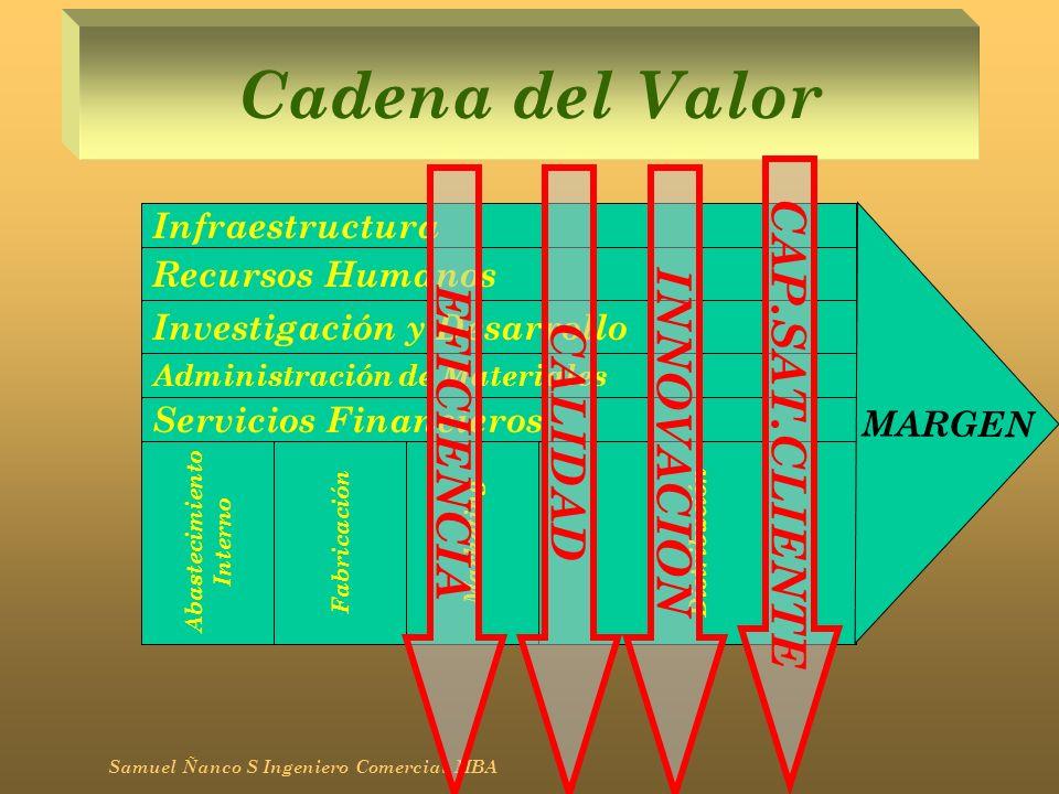 Cadena del Valor Samuel Ñanco S Ingeniero Comercial MBA Abastecimiento Interno FabricaciónMarketing Distribución Administración de Materiales Infraest