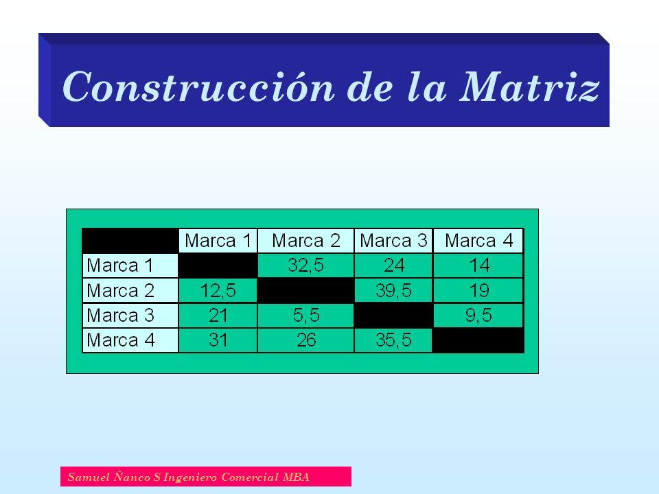 Construcción de la Matriz Samuel Ñanco S Ingeniero Comercial MBA