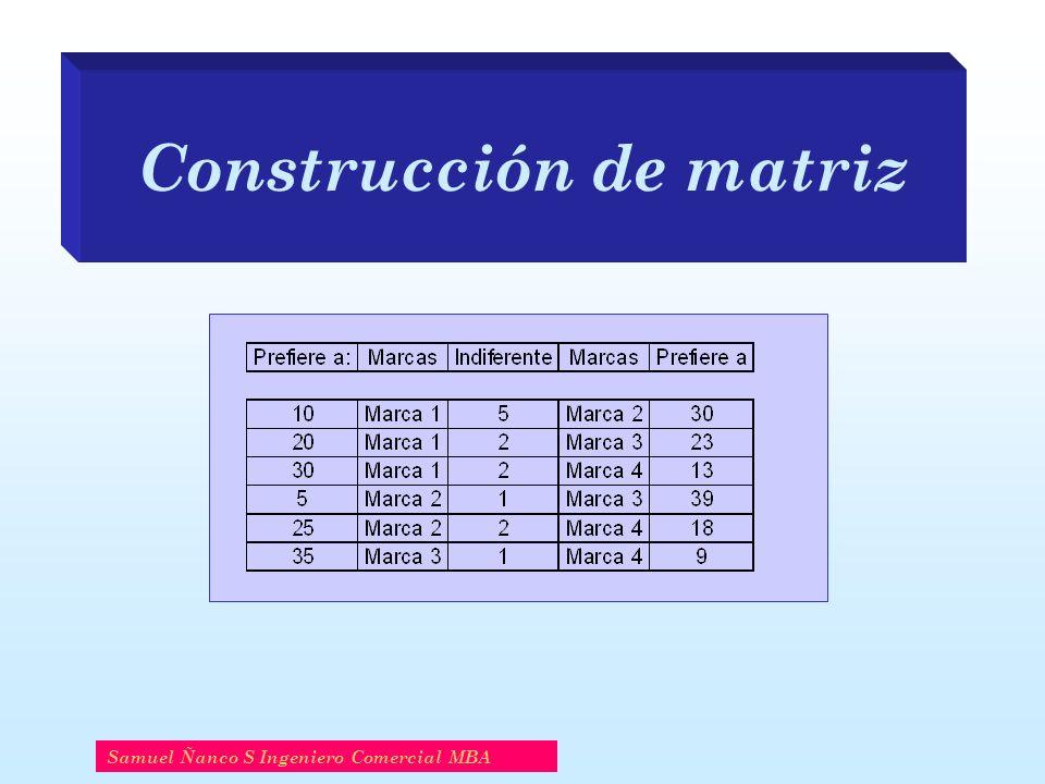 Construcción de matriz Samuel Ñanco S Ingeniero Comercial MBA