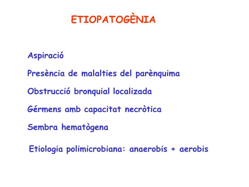 Aspiració Presència de malalties del parènquima Obstrucció bronquial localizada Gérmens amb capacitat necròtica Sembra hematògena Etiologia polimicrob
