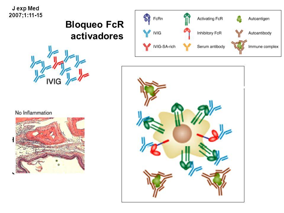 Bloqueo FcR activadores J exp Med 2007;1:11-15