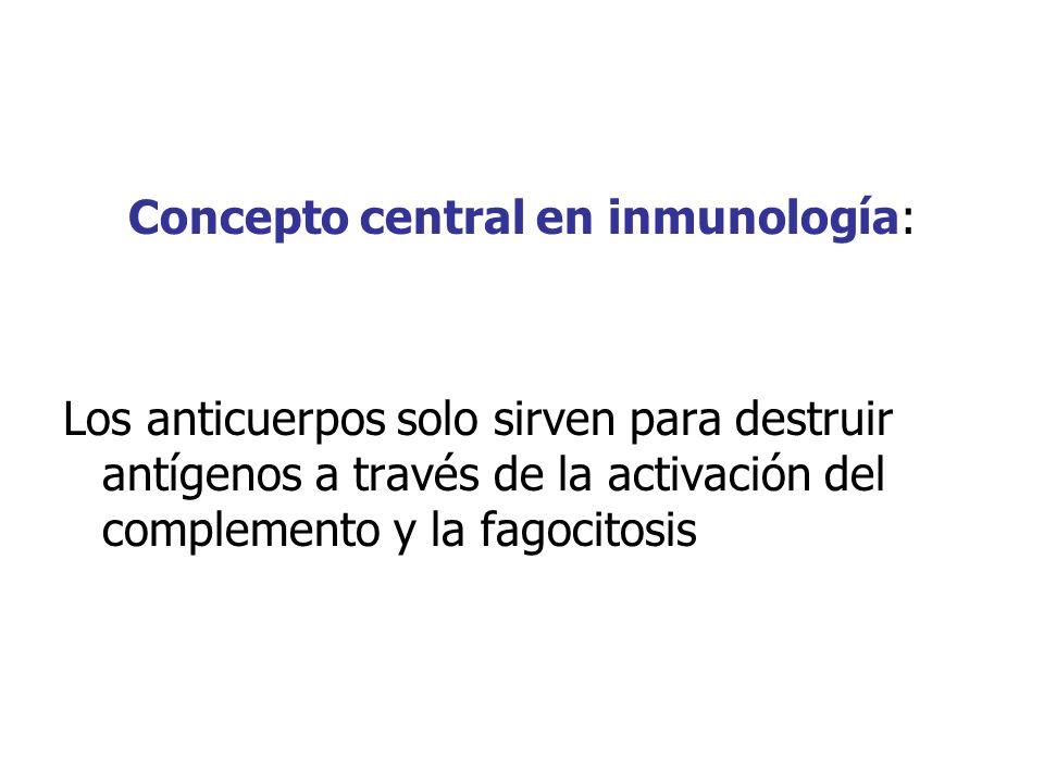 Concepto central en inmunología: Los anticuerpos solo sirven para destruir antígenos a través de la activación del complemento y la fagocitosis