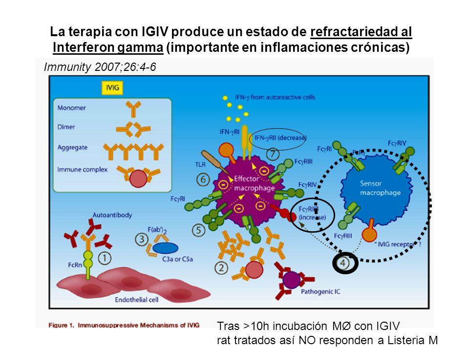 La terapia con IGIV produce un estado de refractariedad al Interferon gamma (importante en inflamaciones crónicas) Immunity 2007;26:4-6 Tras >10h incu
