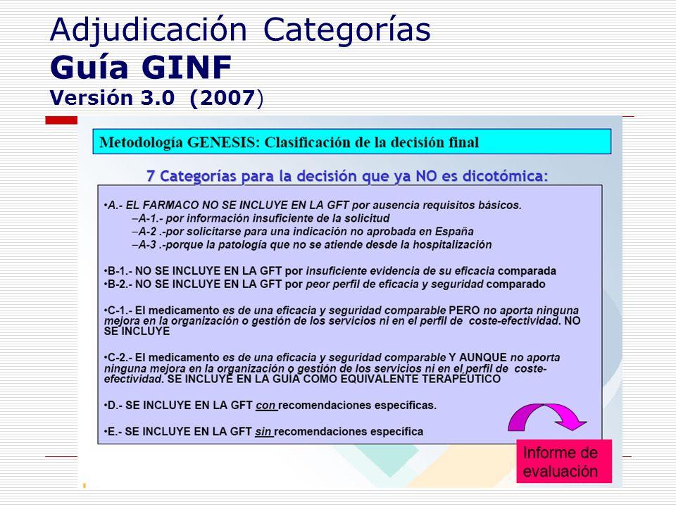 Adjudicación Categorías Guía GINF Versión 3.0 (2007)
