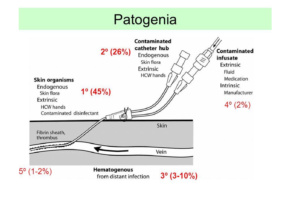 Patogenia 1º (45%) 2º (26%) 3º (3-10%) 4º (2%) 5º (1-2%)