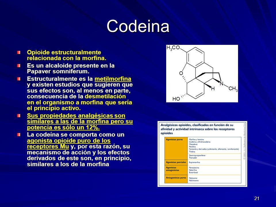 21 Codeina Opioide estructuralmente relacionada con la morfina. Es un alcaloide presente en la Papaver somniferum. Estructuralmente es la metilmorfina
