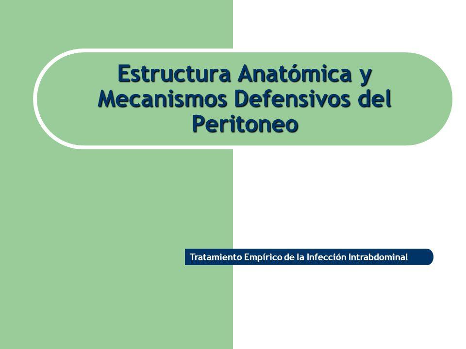 Estructura Anatómica y Mecanismos Defensivos del Peritoneo Tratamiento Empírico de la Infección Intrabdominal