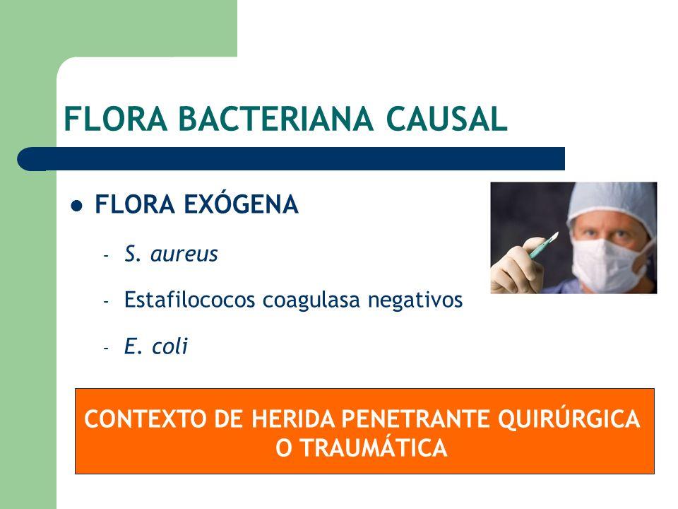 FLORA BACTERIANA CAUSAL FLORA EXÓGENA – S. aureus – Estafilococos coagulasa negativos – E. coli CONTEXTO DE HERIDA PENETRANTE QUIRÚRGICA O TRAUMÁTICA