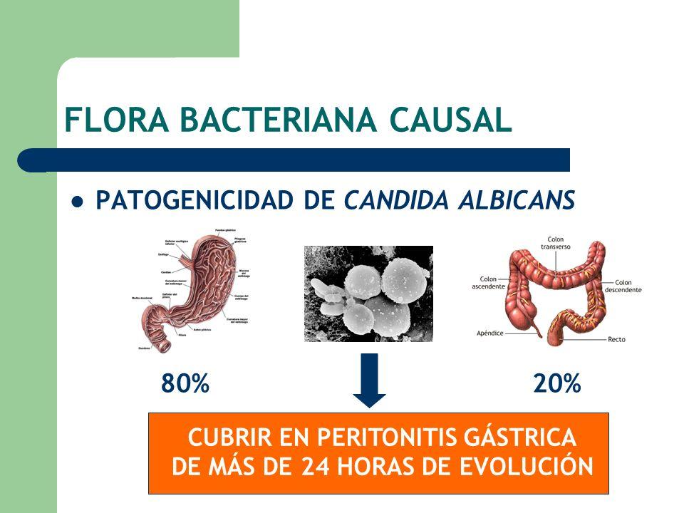FLORA BACTERIANA CAUSAL PATOGENICIDAD DE CANDIDA ALBICANS 80%20% CUBRIR EN PERITONITIS GÁSTRICA DE MÁS DE 24 HORAS DE EVOLUCIÓN