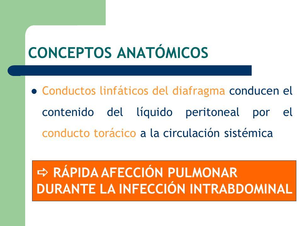 Conductos linfáticos del diafragma conducen el contenido del líquido peritoneal por el conducto torácico a la circulación sistémica RÁPIDA AFECCIÓN PU