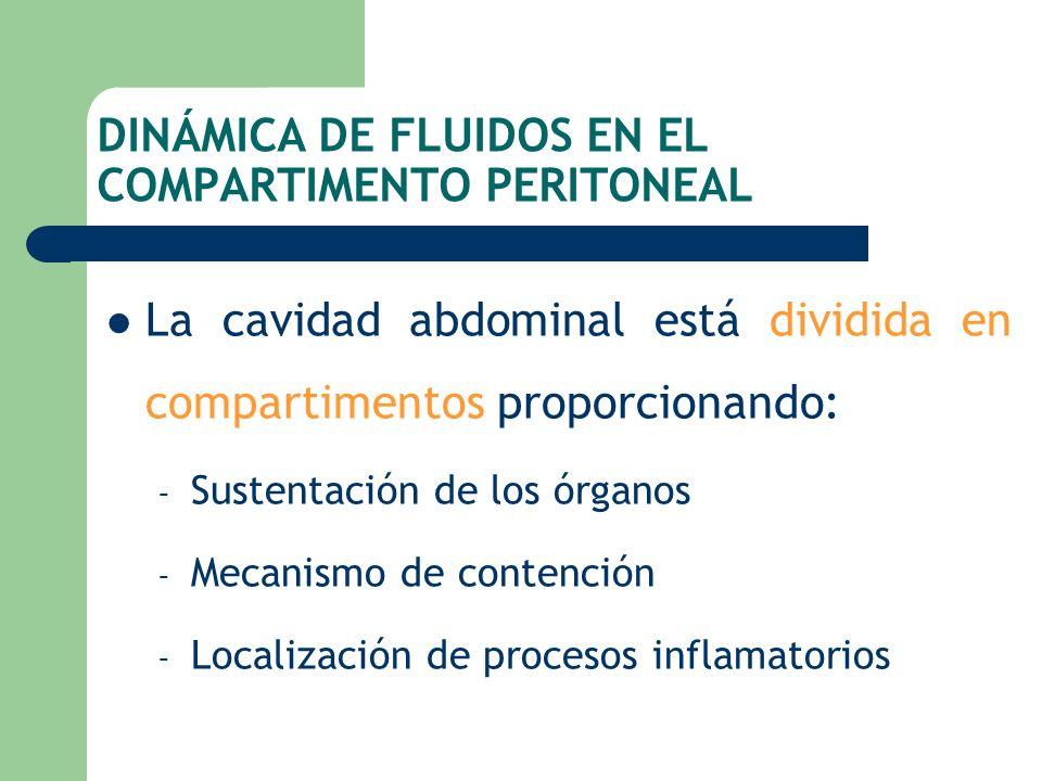 DINÁMICA DE FLUIDOS EN EL COMPARTIMENTO PERITONEAL La cavidad abdominal está dividida en compartimentos proporcionando: – Sustentación de los órganos