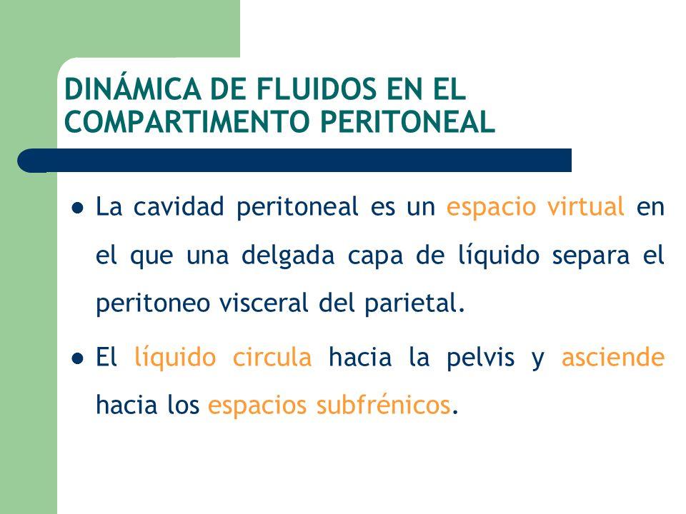 DINÁMICA DE FLUIDOS EN EL COMPARTIMENTO PERITONEAL La cavidad peritoneal es un espacio virtual en el que una delgada capa de líquido separa el periton