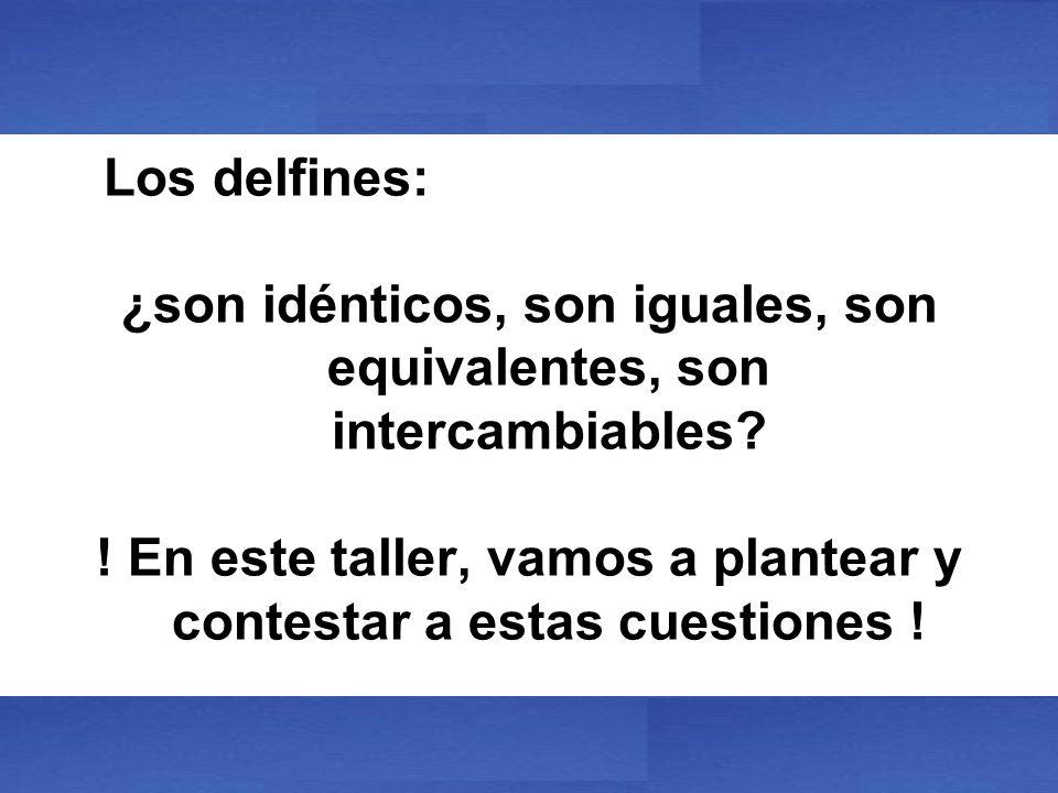 Los delfines: ¿son idénticos, son iguales, son equivalentes, son intercambiables? ! En este taller, vamos a plantear y contestar a estas cuestiones !