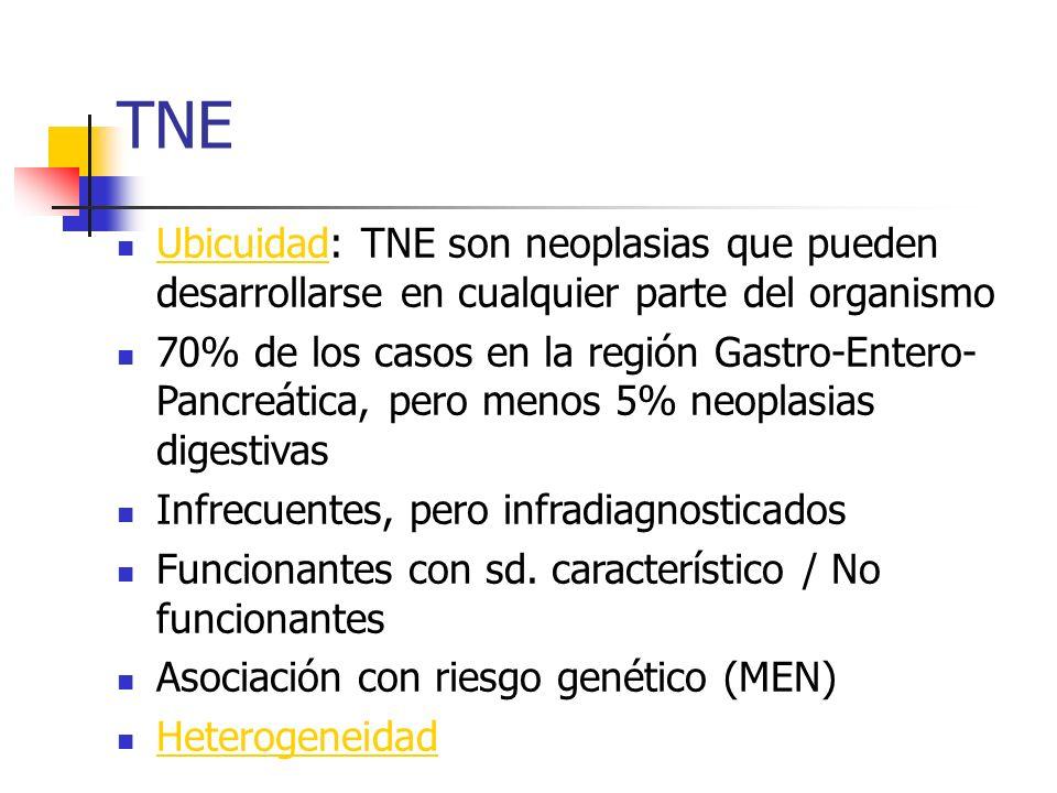 Tendencias epidemiológicas TNE Incidencia variable SEER 4-10/100.000/año Estudio necrópsico Clinica Mayo 6.500 / 1.000.000 Incidencia creciente: SEER 1973 0.8/100.000 SEER 1999 2.9/100.000