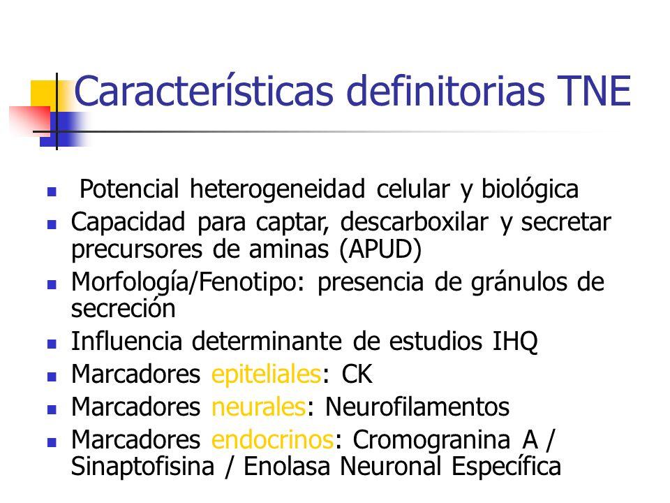 Tratamiento farmacológico de TNE Análogos Somatostatina mejoran CDV y controla el síndrome carcinoide Mediana supervivencia en Carcinoides Metastáticos (SEER 2001): 1973-1987: 17 m 1988-1999: 37 m P <.00005 Formulaciones de liberación lenta mantienen niveles plasmáticos estables entre 14 y 28 días Control hormonal en 72% de los pacientes
