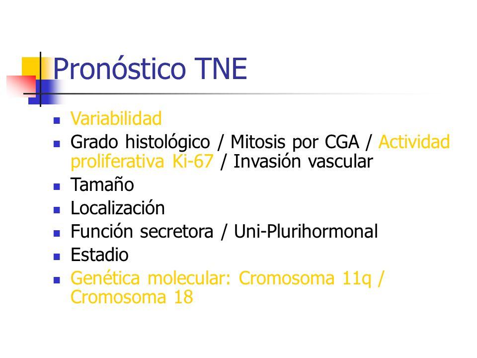Pronóstico TNE Variabilidad Grado histológico / Mitosis por CGA / Actividad proliferativa Ki-67 / Invasión vascular Tamaño Localización Función secret
