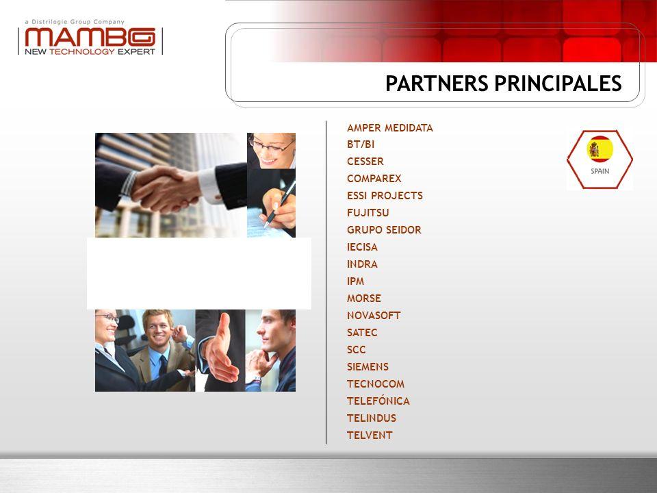 AMPER MEDIDATA BT/BI CESSER COMPAREX ESSI PROJECTS FUJITSU GRUPO SEIDOR IECISA INDRA IPM MORSE NOVASOFT SATEC SCC SIEMENS TECNOCOM TELEFÓNICA TELINDUS TELVENT PARTNERS PRINCIPALES