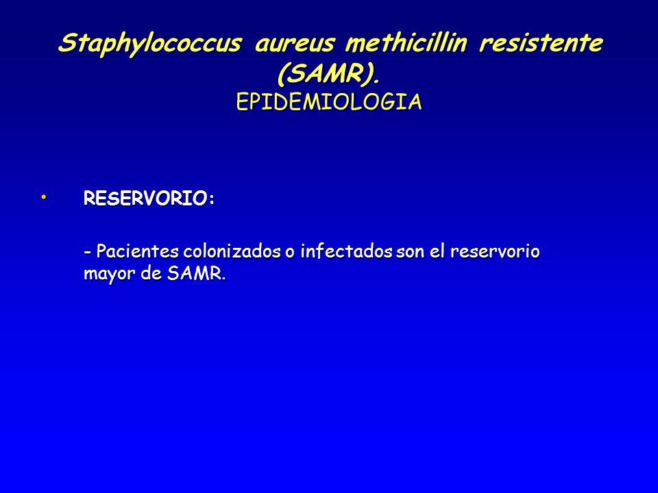 Staphylococcus aureus methicillin resistente (SAMR). EPIDEMIOLOGIA RESERVORIO: RESERVORIO: - Pacientes colonizados o infectados son el reservorio mayo