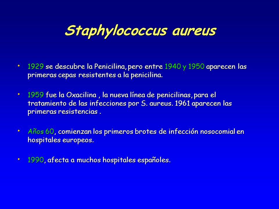 Staphylococcus aureus methicillin resistente (SAMR) Resistente a todos los antibióticos b-lactamasas (meticilina, oxacilina o nafcilina), así como a otros grupos de antibióticos (tetraciclinas, macrólidos, lincosaminas, aminoglucósidos e incluso quinolonas) Resistente a todos los antibióticos b-lactamasas (meticilina, oxacilina o nafcilina), así como a otros grupos de antibióticos (tetraciclinas, macrólidos, lincosaminas, aminoglucósidos e incluso quinolonas) Importante aumento, desde 1960, como causa de infecciones asociadas a cuidados.