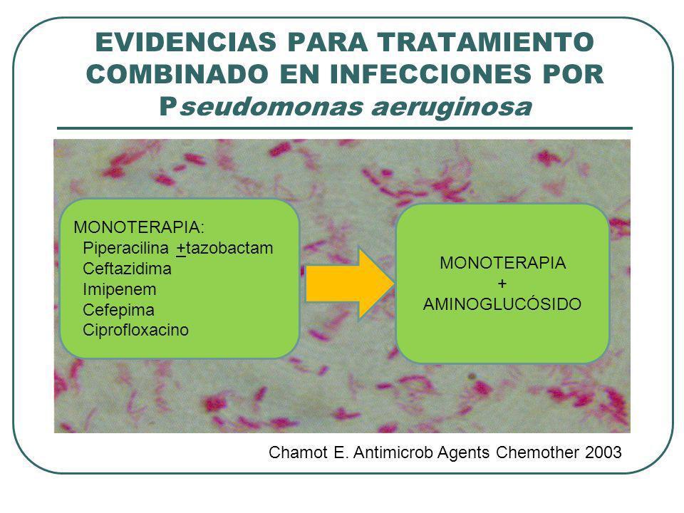 EVIDENCIAS PARA TRATAMIENTO COMBINADO EN INFECCIONES POR Pseudomonas aeruginosa Chamot E. Antimicrob Agents Chemother 2003 MONOTERAPIA: Piperacilina +