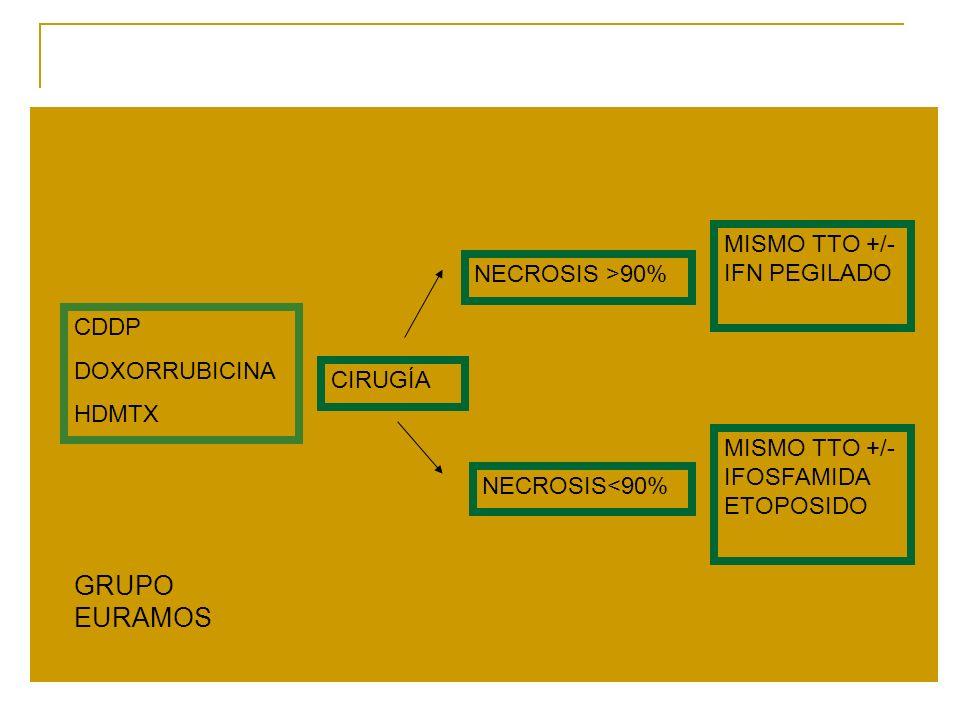 CDDP DOXORRUBICINA HDMTX CIRUGÍA NECROSIS >90% MISMO TTO +/- IFN PEGILADO NECROSIS<90% MISMO TTO +/- IFOSFAMIDA ETOPOSIDO GRUPO EURAMOS