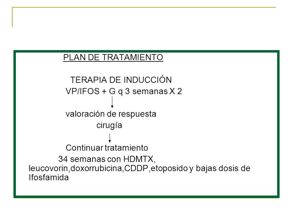 PLAN DE TRATAMIENTO TERAPIA DE INDUCCIÓN VP/IFOS + G q 3 semanas X 2 valoración de respuesta cirugía Continuar tratamiento 34 semanas con HDMTX, leuco