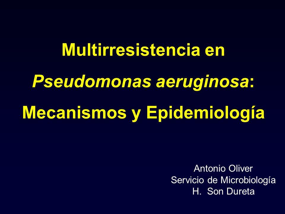 Multirresistencia en Pseudomonas aeruginosa: Mecanismos y Epidemiología Antonio Oliver Servicio de Microbiología H. Son Dureta