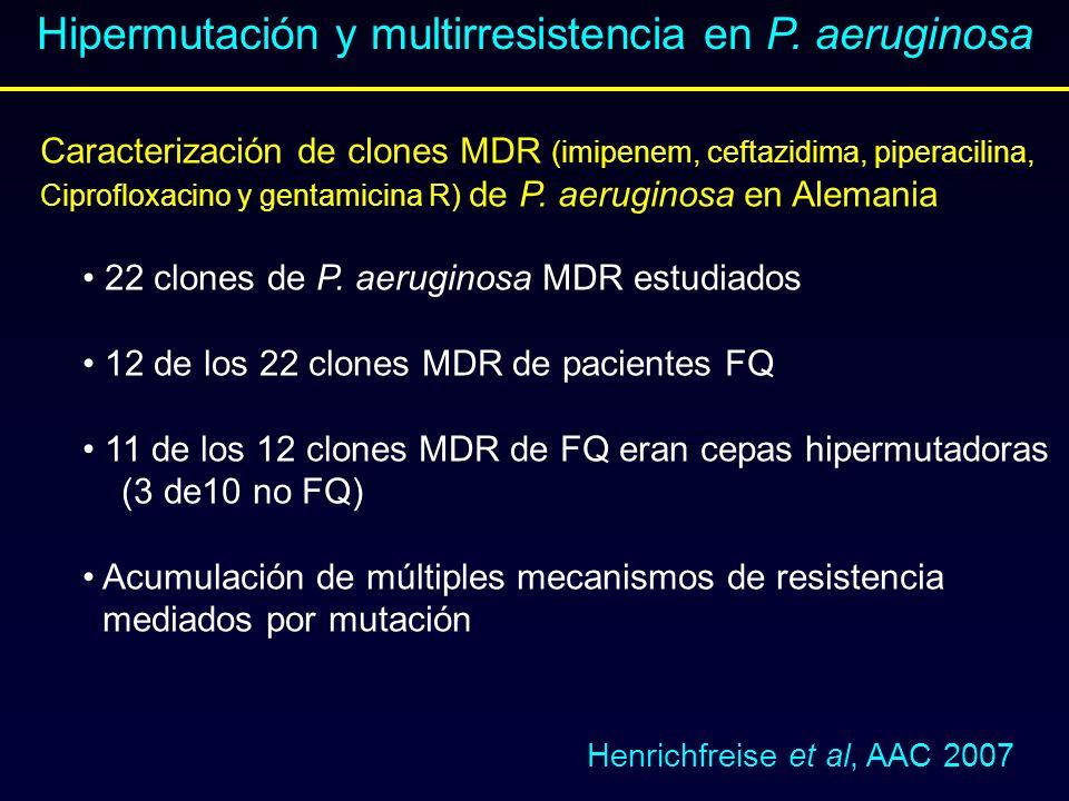 Henrichfreise et al, AAC 2007 Caracterización de clones MDR (imipenem, ceftazidima, piperacilina, Ciprofloxacino y gentamicina R) de P. aeruginosa en
