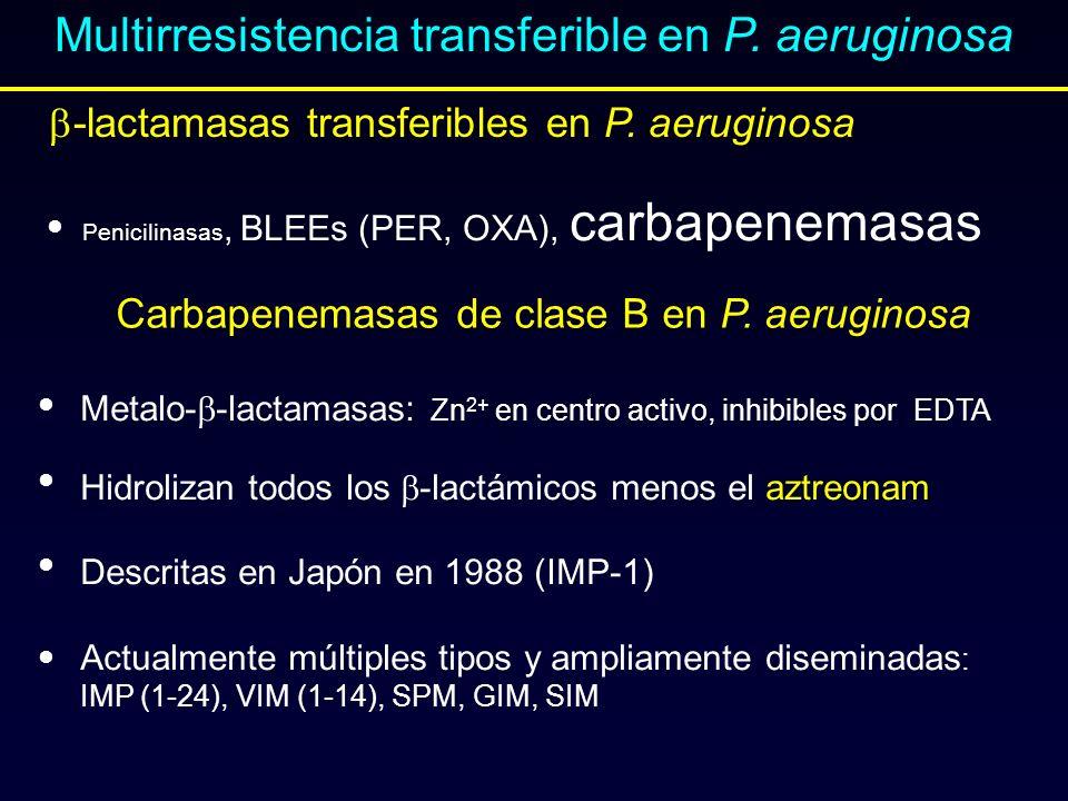Multirresistencia transferible en P. aeruginosa Penicilinasas, BLEEs (PER, OXA), carbapenemasas Carbapenemasas de clase B en P. aeruginosa Metalo- -la